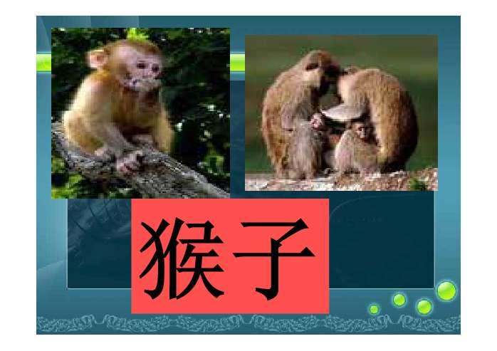 2,观察图画,了解十二种动物的样子,建立起名称与实物的联系,丰富学生