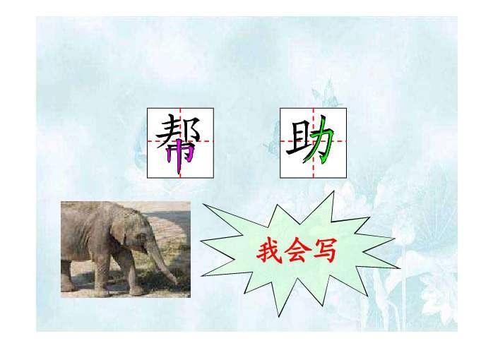 可爱的小象ppt