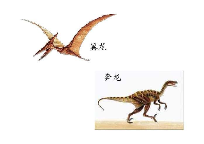 恐龙ppt - 课件制作技巧