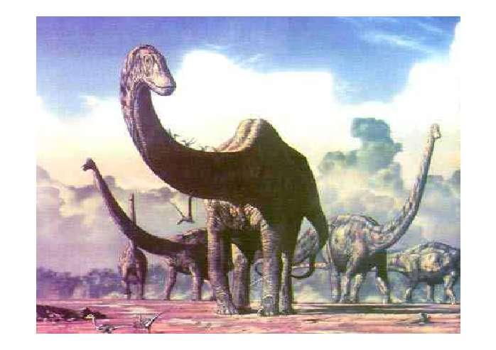6亿年的恐龙灭绝了,成为生物史上最大的谜